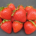 Strawberry 'Fenella'*  - Pack of 12 (Late Summer)